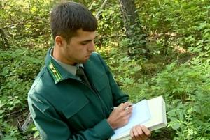 На страже леса: Молодые защитники амурской природы обороняют ее от нарушителей