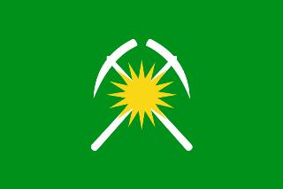 Флаг города Райчихинск:
